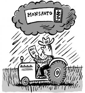 Monsanto na crista da onda do monopólio